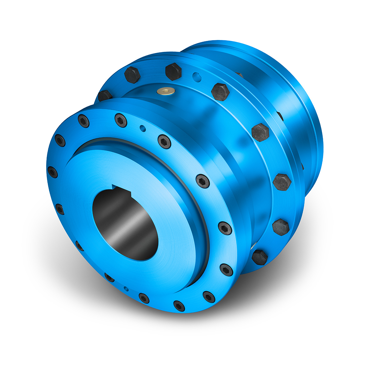 ZAPEX ZW Gear Coupling